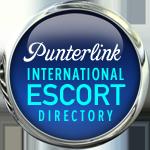 Punterlink Banner
