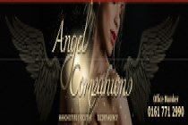 Angel Companions - Angel Companions - North West