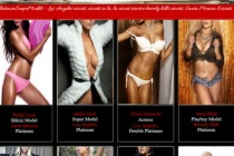 Platinum Super Models - Platinum Super Models - California