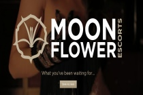 Moon Flower Escorts - Moon Flower Escorts - East Anglia