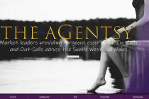 The aGentsy - TheaGentsy - Wales
