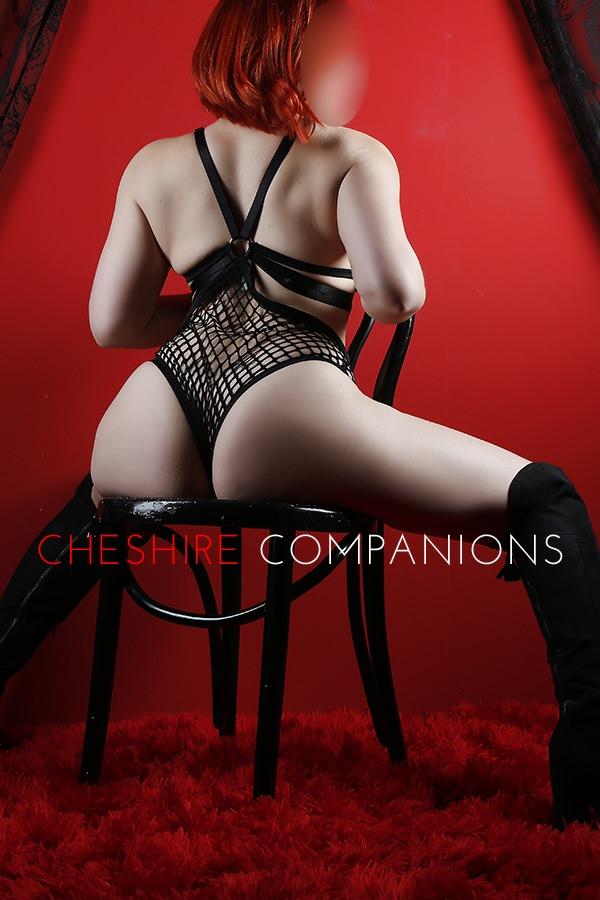 cheshire companions