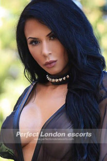 Carol - London escort - Hot Brunette!