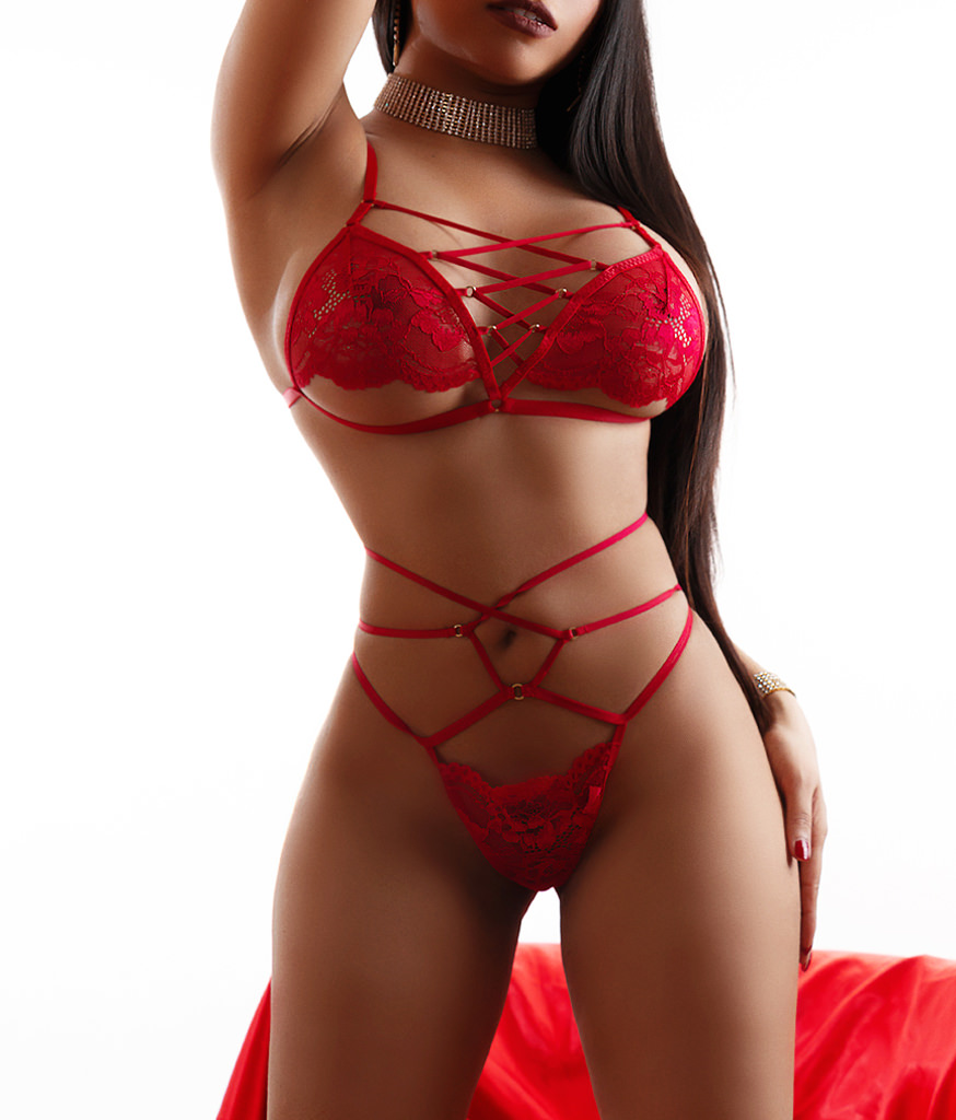escorts champaign illinois